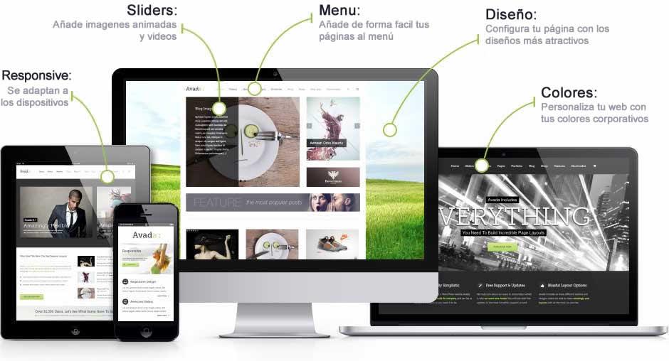 caracteristicas_webs oferta paginas web estepona gausswebapp